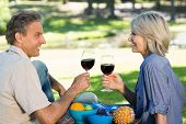 Side view of happy couple toasting red wine in park