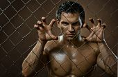 stock photo of felon  - the very muscular handsome felon guy out of netting steel fence - JPG