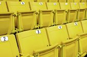 picture of grandstand  - Grandstand seats in the stadium are yellow - JPG