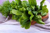 pic of sorrel  - Tuft of fresh sorrel in basket on wooden background - JPG