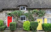 picture of english cottage garden  - cottage with straw thatched roof and colorful doors dorset - JPG