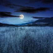 picture of moon-flower  - composite mountain summer landscape - JPG