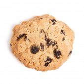 stock photo of baked raisin cookies  - Cookies with raisins isolated on white background - JPG