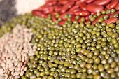 foto of urad  - assortment of beans legumes selective focus on mung beans  - JPG