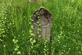 image of tombstone  - Old tombstone at an abandoned cemetery in Olomouc - JPG