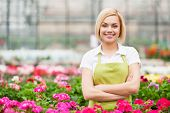 image of apron  - Beautiful young woman in apron keeping arms crossed and smiling while standing in a greenhouse - JPG