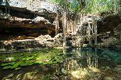 pic of cenote  - X - JPG