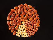 picture of pecan nut  - Assorted nuts  - JPG