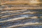 picture of log fence  - Wall from logs of the old wooden house - JPG