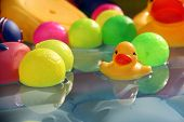 stock photo of pool ball  - A yellow baby duck toy floating in water along with colorful balls in a baby swimming pool