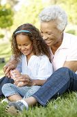 stock photo of granddaughter  - African American Grandmother And Granddaughter Blowing Bubbles In Park - JPG