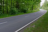 image of tall grass  - The photo shows an asphalt road - JPG