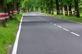 pic of tall grass  - The photo shows an asphalt road - JPG
