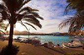 stock photo of marina  - Alcudia Majorca at sunset on marina port Mallorca Balearic islands - JPG