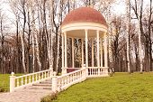 stock photo of gazebo  - Beautiful gazebo in a park surrounded by trees and grass - JPG