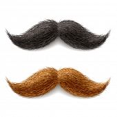 stock photo of shaved head  - Fake mustaches - JPG