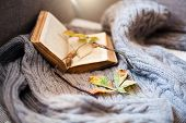 Autumn Still Life. Open Book, Fallen Leaves, Spectacles And Cozy Sweater Are On Sofa In Sunlight. Co poster