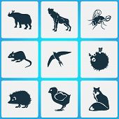 Zoo Icons Set With Mouse, Rhino, Hyena And Other Coyote Elements. Isolated Illustration Zoo Icons. poster