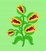 Flytrap Monster Plant. Flower Predator Carnivorous Plant. Angry Flowers With Teeth poster