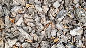 Wood Sawdust For The Garden. Texture Of A Tree Bark Lying On The Ground. Background From A Tree Bark poster