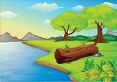 stock photo of hollow log  - Illustration of trees and log hollow by the water - JPG