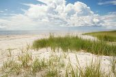 A Sandy Beach On One Of The Many Pamlico Sound Islands Of The North Carolina Outer Banks poster