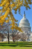 United States Capitol Building in autumn - Washington DC United States of America poster