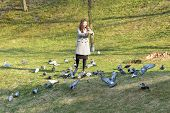 Girl Feeds Birds In Sunny Weather. Beautiful Young Woman Feeding Birds In The Park At Sunny Fall Day poster
