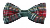 stock photo of hair bow  - Red green plaid bow tie - JPG