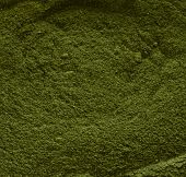 Wheatgrass Powder Close-Up
