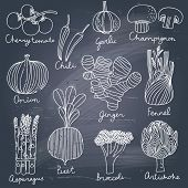 image of mushroom  - Tasty vegetables in vector set  - JPG