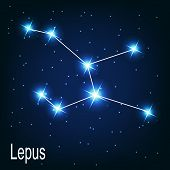 Постер, плакат: The constellation Lepus star in the night sky Vector illustra