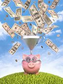 picture of piglet  - Piggy bank with funnel to get more money - JPG