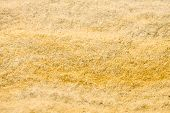 foto of heatwave  - texture yellow red sand on a sandy beach - JPG