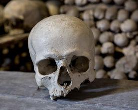 foto of skull crossbones  - Human skulls in the basement crypt - JPG