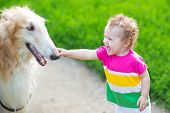 stock photo of baby dog  - Happy Laughing Baby Playing With A Big Dog - JPG