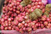 pic of red shallot  - Shallot  - JPG