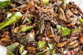 stock photo of leaf insect  - Fried edible insects mix with green lime leaves - JPG