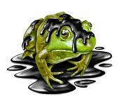 picture of accident victim  - Polluted fauna and oil disaster victim concept as a dirty green frog with black crude petroleum liquid dripping from its amphibian skin as a symbol for the dangers of toxic waste in a sensitive habitat and environmental hazards from industry - JPG