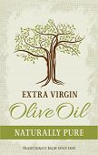 picture of olive trees  - Olive tree vintage label - JPG