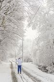 pic of nordic skiing  - Girl cross country skiing - JPG