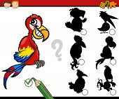 image of brain-teaser  - Cartoon Illustration of Education Shadow Matching Game for Preschool Children - JPG