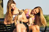 pic of chiwawa  - two pretty young women playing with cute Chiwawa puppies in the park - JPG