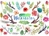 picture of  art  - Vector watercolor hand drawn colorful flowers - JPG