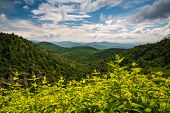 picture of blue ridge mountains  - Appalachian Mountains Summer Asheville North Carolina Blue Ridge Parkway landscape photography - JPG