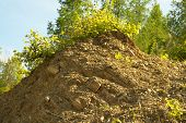 stock photo of mud  - Rock hill with mud and plant stones - JPG
