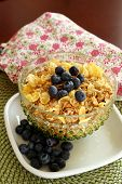 picture of cereal bowl  - A bowl of breakfast cereal topped with blueberries - JPG
