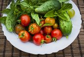 foto of roughage  - Fresh vegetables and herbs picked from garden in bowl - JPG