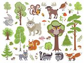 Big Set Of Wild Forest Animals Birds And Trees. Cartoon Forest Isolated On White Background. Wild Fo poster