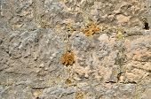 Rough Stone Wall poster